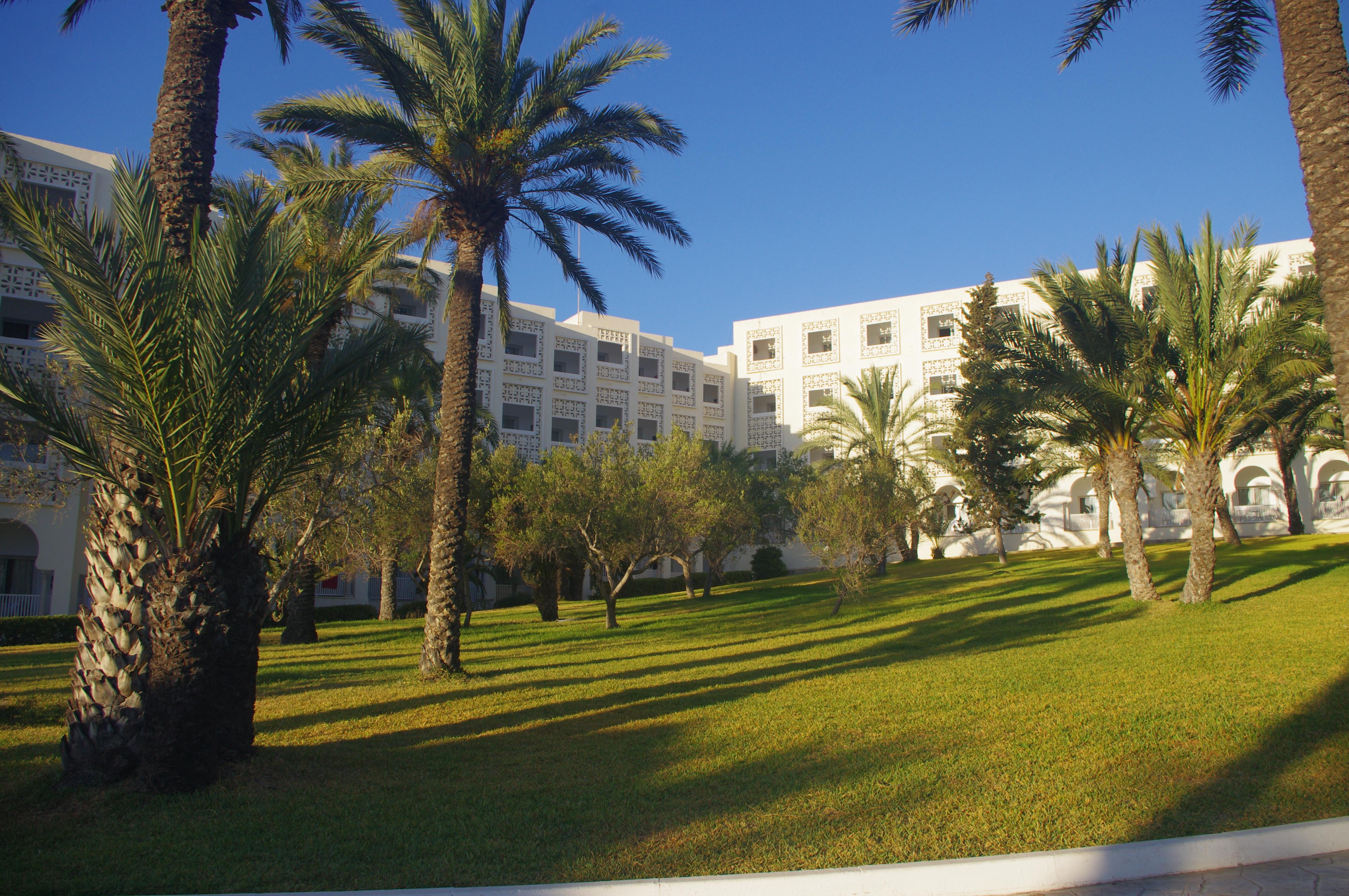Pohled na Marhaba resort ze zahrady